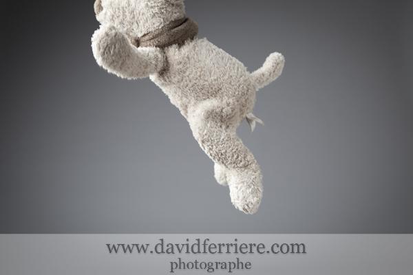 20101117-blog-davidferriere-001